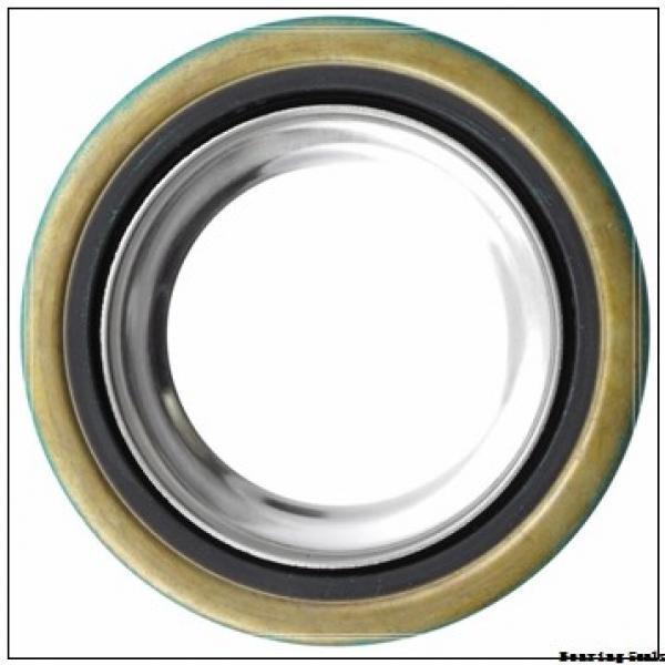 Dodge 42520 Bearing Seals #1 image