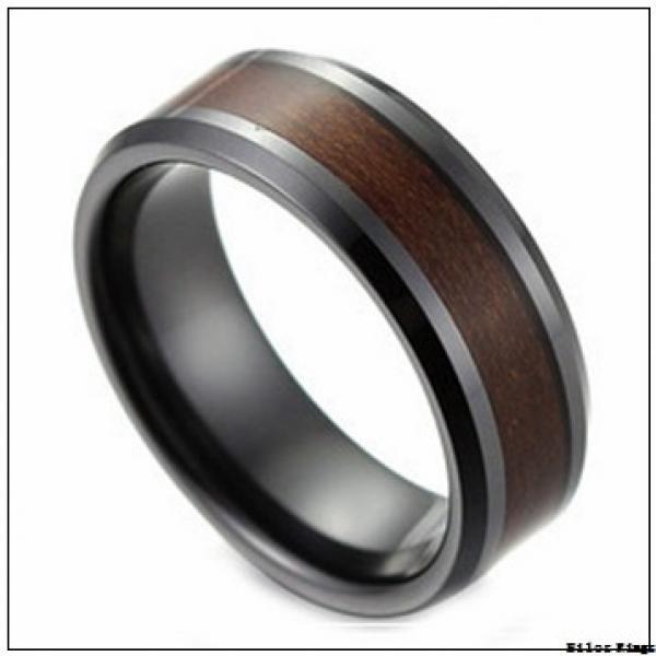 SKF 61902 JV Nilos Rings #3 image